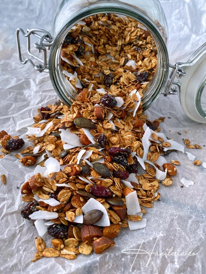 Granola de casa cu cocos simerisoare